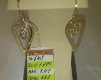 Golden earrings 14k Gold (585) 0,19 oz.