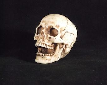 Skull Paperweight, Skull Gear Shift Knob
