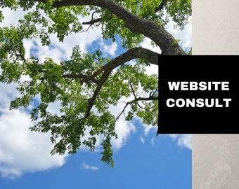 Website copy writer