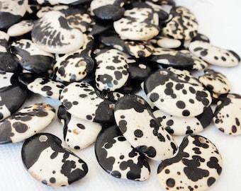 Dalmata - 5/10/50/100 - seed Dalmatian - quantity choice