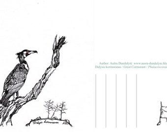Postcard Birds: Great Cormorant illustration