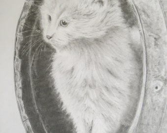 Kitten Cat Farm Pencil Drawing Original