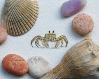 Original miniature watercolor painting of a Crab.
