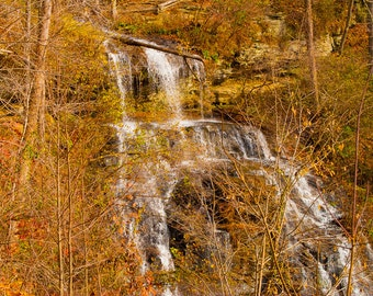 South Carolina Waterfall