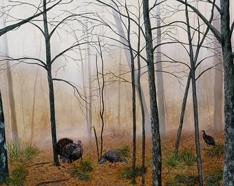 Wild Turkey Art, Palmetto Turkeys, a wildlife art print