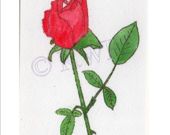 Original letterpress print Red Rose