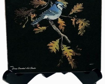 Eastern Blue Jay - Laser Engraved Black Granite Tile By Jerry Simchuk Art Studio