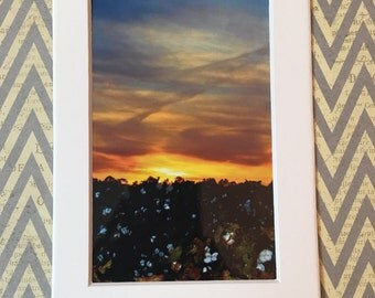 sunset cotton picture