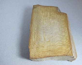 Fossilized Wood / Fossil Wood Rough / Agatized Wood / Petrified Wood / Cabachons / Knife Scales