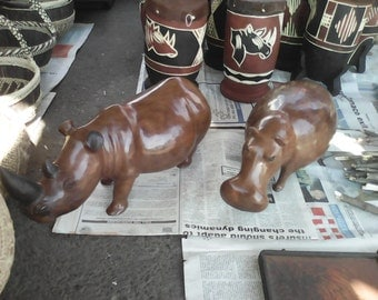 Hippo and Rhino(Africa's endangered species)