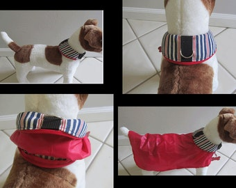 Really cool Dog collars with built in retractable rain gear made in U.S.A.