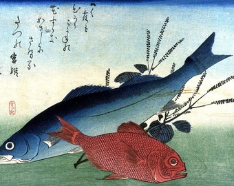 A Shoal of Fishes Seaperch & Alfonsino Japanese Reproduction Woodblock Print Ando Hiroshige