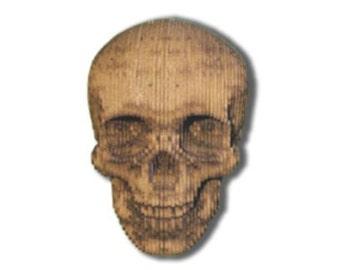 3D Skull kit