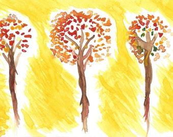 Apple Trees By Season