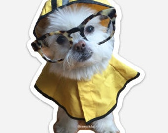 Sticker: Soggy Doggy