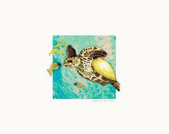 30cm x 30cm Art Print - Hawksbill Sea Turtle