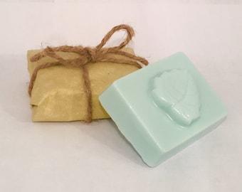 Eucalyptus shea butter soap