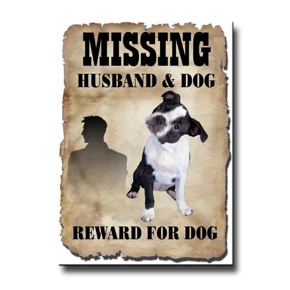Boston Terrier Husband Missing Reward Fridge Magnet No 3 Puppy