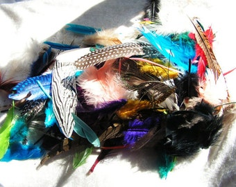 Costume supply, Grab Bag, Feather mix, Mixed feather lot, Random assortment, Surprise bag!