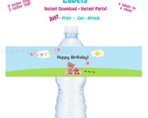 Printable Water Bottle Label PrintableTeddy Bear Picnic Birthday Party Water Bottle Label