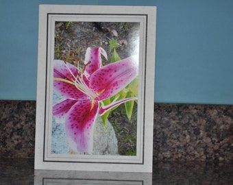Double Framed Card - Pink Lily