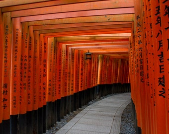 Fushimi Inari shrine Photography