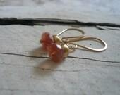 Dandy Earrings in Spice-  Sunstone. 14kt Goldfill. Dangle earrings. Handmade