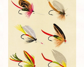 fly fishing print from an 1892 book, printable digital download no. 936