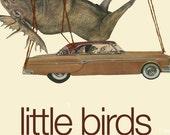 little birds, big adventures - collage art book by Vivienne Strauss