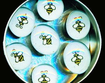 Bumblebee Magnet Set