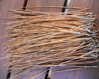 Pine Needles for Pine Needle Basket Making, Basket Weaving Supplies, Basketry Supplies, Crafting Supply