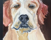 Confident Lab Original Oil Painting Daily Painting Animal Portrait