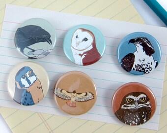Birds of Prey Pins--Set of 6