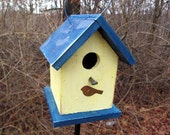 Chickadee Wren Songbird Yellow Blue Rusty Bird