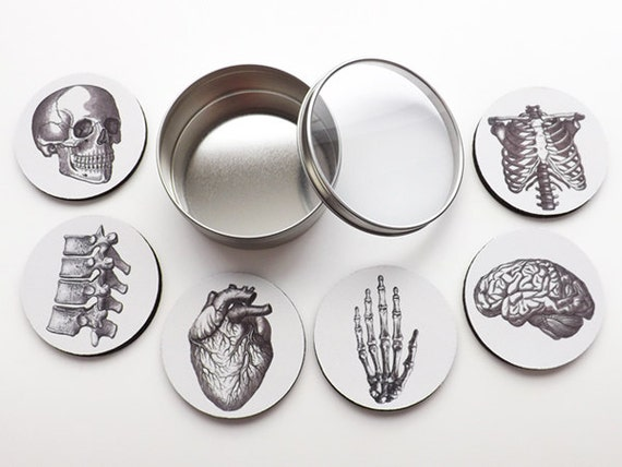 Anatomy Coasters teacher medical student hostess gifts party favors skull brain anatomical heart black and white minimalist home decor goth