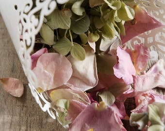 Paper Petal Cones with Pearl Finish Lace Trim - 12 Cones