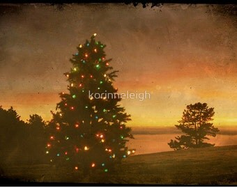 Christmas tree cards Evening lights, Scenic, Card or Photo