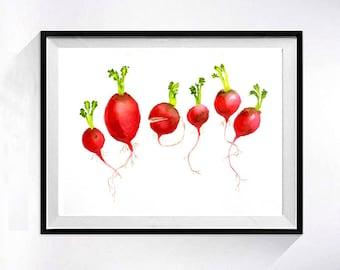 Kitchen wall art radishes art Print Watercolor painting, Vegetable garden botanical art, Red artwork red, Cook gardener Gift,  K