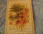 Victorian advertising trade card religious. Let not sin... Reign in your mortal body Romans 6:12