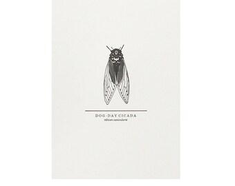 Cicada Print