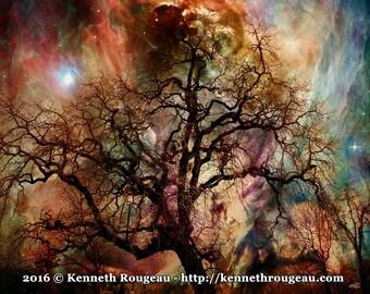 Heaven & Earth - Surreal Fantasy Oak Tree Home Decor 11x14 Fine Art Print by Kenneth Rougeau