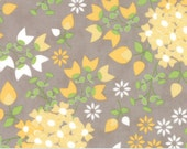 Sundrops (29010 14) Bouquet Taupe by Corey Yoder