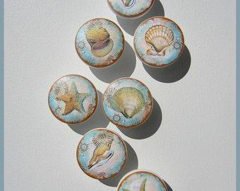 Seashell Knobs • Vintage Seashell • Shabby Knobs • Cottage Chic • Drawer Pulls • Dresser Knobs • Drawer Knobs