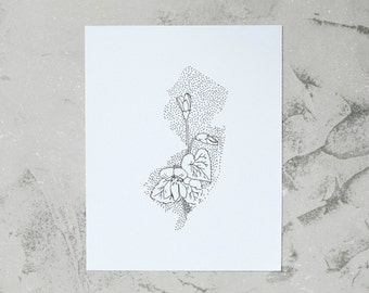 New Jersey> Meadow Violet> State Flower Drawing> Giclee Print