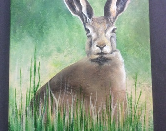 March Hare in Oil on Canvas