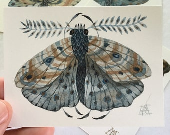 Moth ALUDRA, miniature small watercolor painting