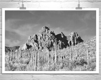 Desert Print, Cactus Art, Sonoran Desert Art, Cactus Print, Arizona Landscape, Black and White, Cacti, Tucson, Pima County, Saguaro Cactus
