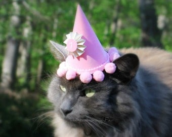 Birthday Hat for Cat or Small Dog - Personalized