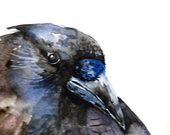 Crow Watercolor, Original Painting, Bird Watercolor Painting, Small Painting