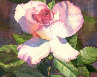 Pink Rose Art Watercolor Painting Print by Cathy Hillegas, 8x10, pink, white, green, watercolor print, watercolor rose, watercolor floral